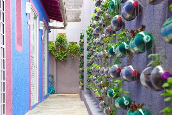 Bức tường thêm nổi bật nhờ hàng cây xanh trồng trong chai nhựa