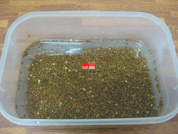 Cách ngâm hạt giống rau