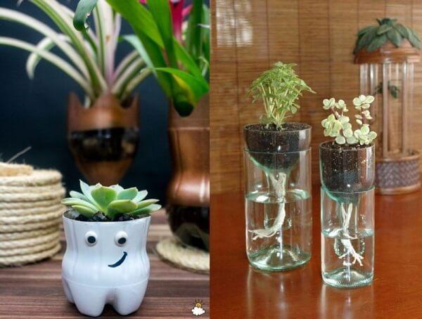 Chai nhựa nhỏ nhắn trồng cây trông thật xinh xắn