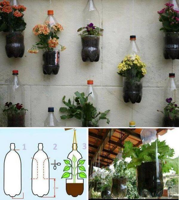 Chai nhựa phải rửa thật sạch trước khi thêm đất để trồng cây