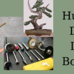 hướng dẫn lũa bonsai