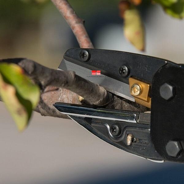 kéo cắt cành cây lưỡi thẳng