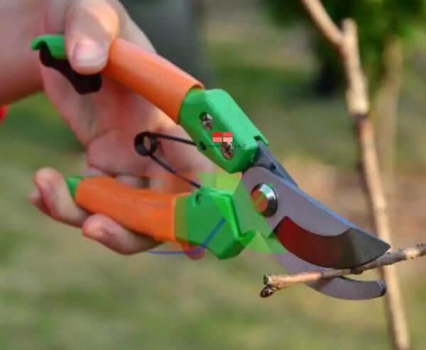 kéo cắt tỉa cây có giá bán đa dạng