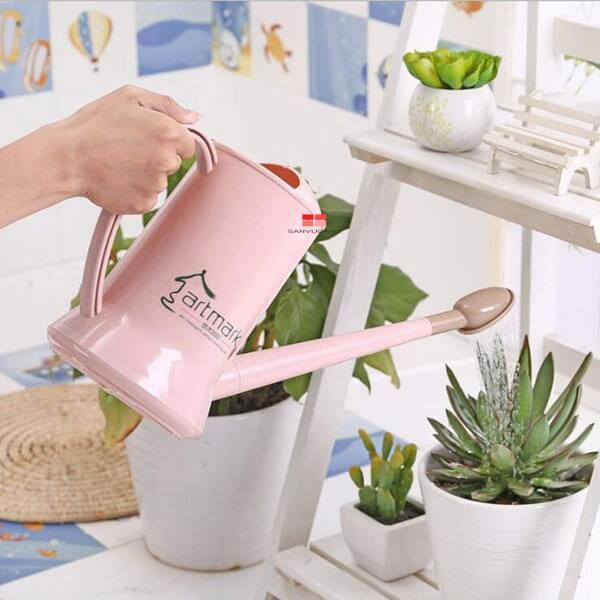 Nên sử dụng bình tưới nước có vòi sen hoặc béc phun