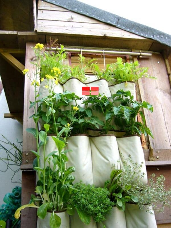 Sử dụng túi vải để trồng cây giúp hạn chế tình trạng đọng nước