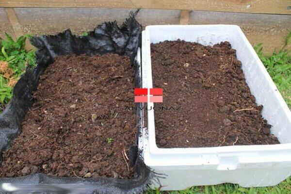 Thêm đất đã trộn với phân vi sinh vào ⅔ thùng xốp