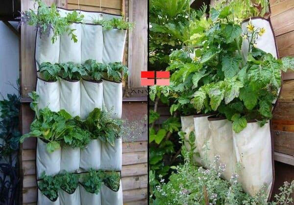 Túi vải trồng rau không chỉ hữu ích mà còn đẹp