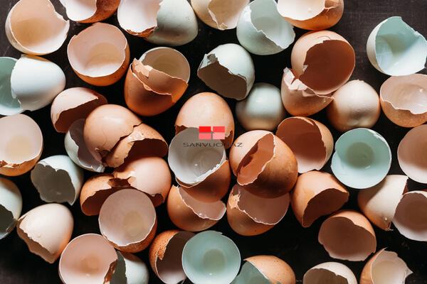 Đừng quên tích trữ vỏ trứng gà để làm đất vườn thêm màu mỡ!