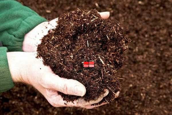 Trộn đất với trấu giúp đất thêm tơi xốp