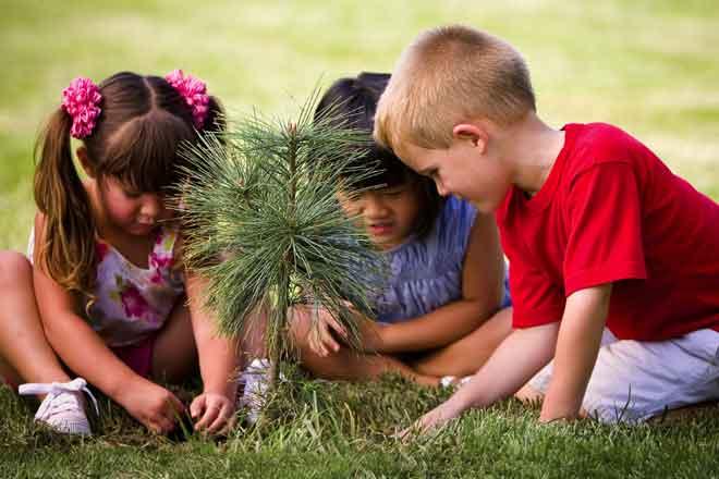 Trồng cây, hoa; hoạt động trong môi trường tự nhiên giúp trẻ có kết quả học tập tốt hơn