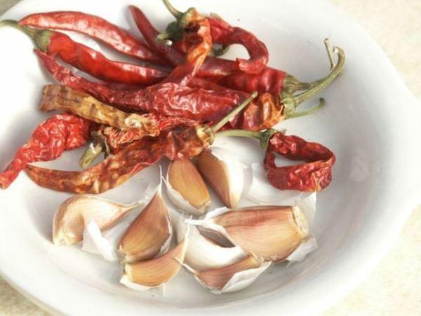 Những nguyên tắc nhất định phải nhớ khi dùng thuốc trừ sâu tỏi ớt