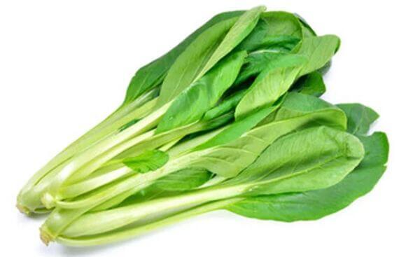 Cải ngọt - 1 trong những giống rau được trồng phổ biến nhất mùa đông