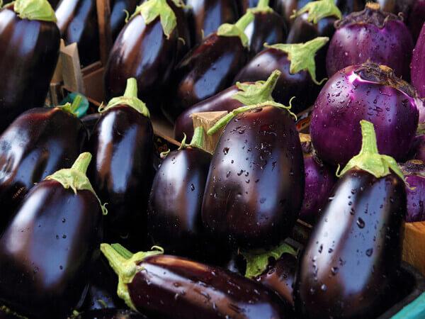 Những quả cà tím thơm ngon đang chờ bạn thưởng thức